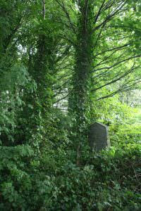 undercliffe grave