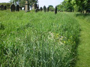 Undercliffe Cemetery Bradford