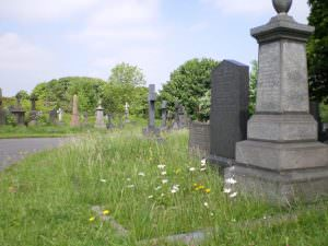 Undercliffe Cemetery views
