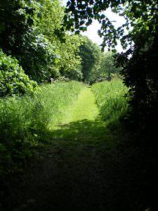 Undercliffe Cemetery views